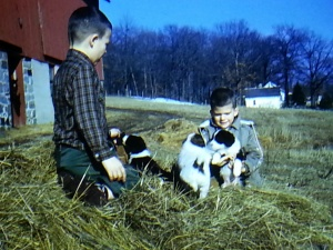 Ed and John in the hay pile with Assy's puppies. Crew cuts = misbehaving